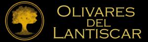 Aceite Olivares de Lantiscar